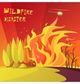 Wildfire Disaster vector image