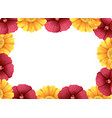a beautiful flower frame vector image