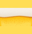 beer with bubble foam brewery vector image vector image