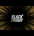 black friday promotion banner vector image vector image
