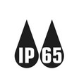 ip65 protection certificate standard icon water vector image vector image