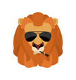 lion cool serious avatar of emotions wild animal vector image vector image