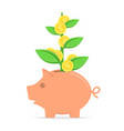 piggy bank with coin tree vector image vector image