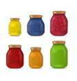 realistic detailed 3d glass jar with jam set vector image vector image