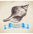 Seashells hand drawn sketch vector image vector image