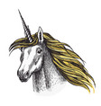 unicorn horse sketch fairy tale animal vector image vector image