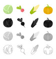 vegetarian diet food and other web icon in vector image vector image