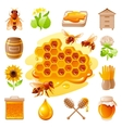 Bee honey icon set with cartoon flat icons vector image