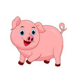cute pig cartoon isolated on white background vector image vector image