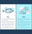 hand drawn seafood set sea bass and oyster graphic vector image