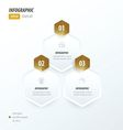 Hexagon infographic 2 color Golden color vector image