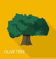 olive tree icon flat style vector image