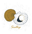 scallop logo hand drawn isolated on white vector image vector image