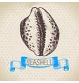 Seashell hand drawn sketch vector image vector image