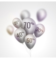 Silver Baloons Discount SALE concept for shop vector image vector image