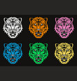 stylized graphic drawing of face of angry tiger vector image