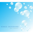 white water bubbles with reflection set on vector image vector image