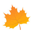 yellow leaf of tree icon isometric style vector image