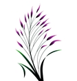 colorful grass vector image