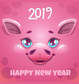 2019 year of the pig new year greeting card vector image vector image