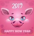 2019 year pig new year greeting card vector image vector image