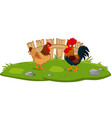 cute chicken cartoon in grass vector image vector image