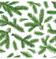 realistic green fir tree branches seamless pattern vector image vector image