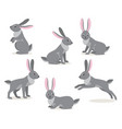 set of cute gray hare in different pose on white vector image