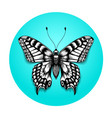 tattoo realistic butterfly in blue circle vector image