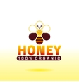 Bee honey logo icon with cartoon flat honeybee vector image