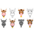 cow and ox animal head icons design set vector image vector image