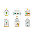 exotic birds in cages collection cute colorful vector image vector image