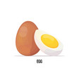 fresh chicken whole and boiled peeled egg with vector image