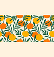 seamless pattern with mandarins modern vector image