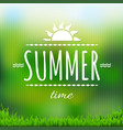 summer time banner with grass vector image vector image