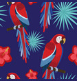 tropical design red macaw parrot seamless pattern vector image vector image