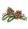 Watercolor Christmas of fir tree vector image