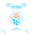 baby boy 1 vector image