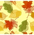 leaves autumn pattern vector image vector image