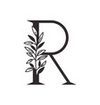 letter r alphabet with leaves