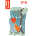 vertical of upupa with colorful woods background vector image vector image