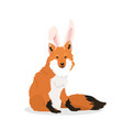 a fox with bunny ears vector image