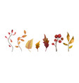 autumn watercolor style hand drawn seasonal vector image vector image