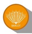 Barley grains design vector image
