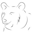 black and white hand drawn linear sketch of bear vector image