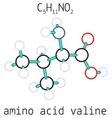 C5H11NO2 valine amino acid molecule vector image vector image