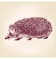 hedgehog hand drawn llustration realistic sketch vector image vector image
