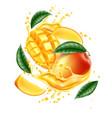 realistic mango leaf slice juice splash vector image vector image
