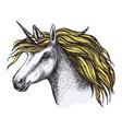 unicorn horse fairy tale animal head sketch vector image vector image