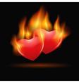 burning hearts vector image